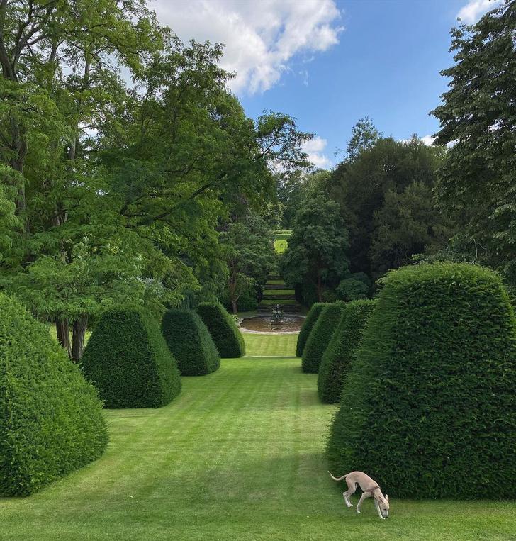 Фото №3 - Английский сад на дачном участке: советы эксперта