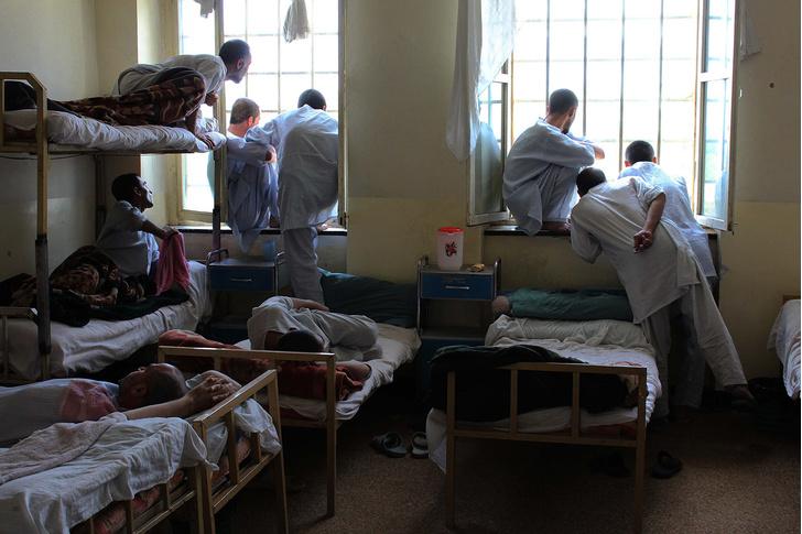 Фото №3 - «Не важно, если кто-то из них умрет»: как талибы искореняют наркобизнес в Афганистане