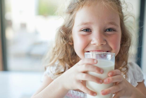 Молоко вредно или полезно
