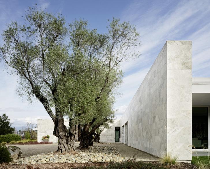 Фото №4 - Современная вилла среди виноградников Калифорнии: проект Джонатана Рахмана