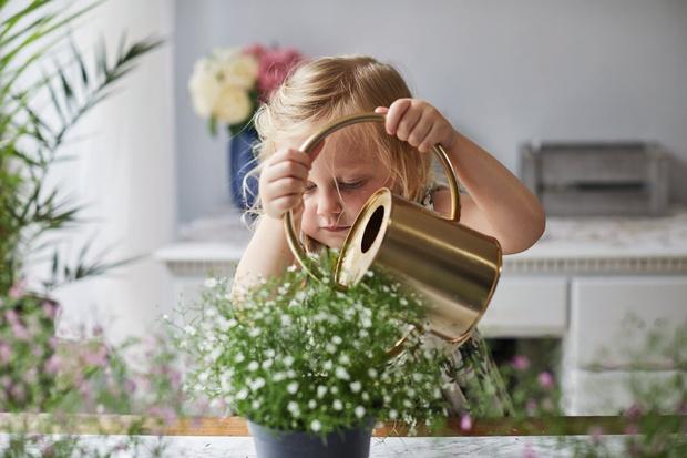 как воспитать трудолюбие у ребенка