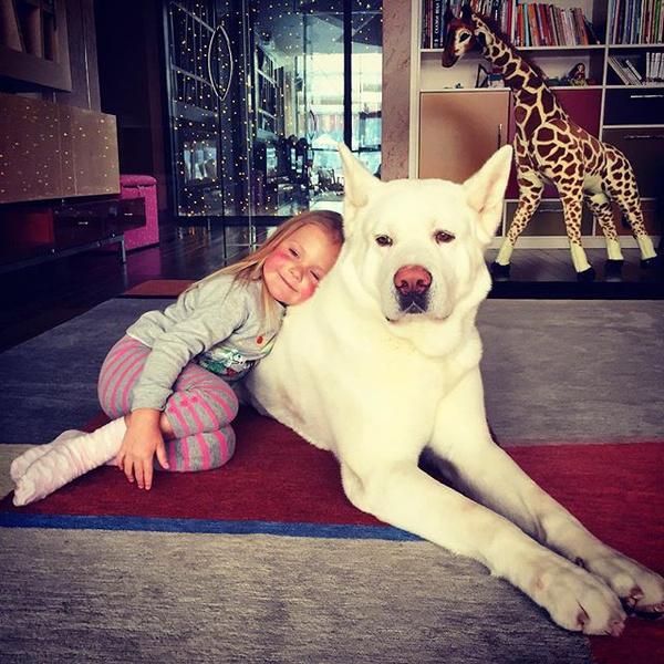 Фото №29 - Домашние животные звезд: собаки, кошки, лемуры, свиньи и даже улитки!