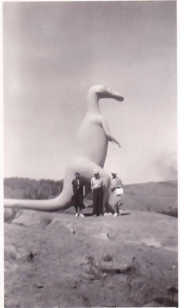 Фото №1 - Прогулки с ретродинозаврами