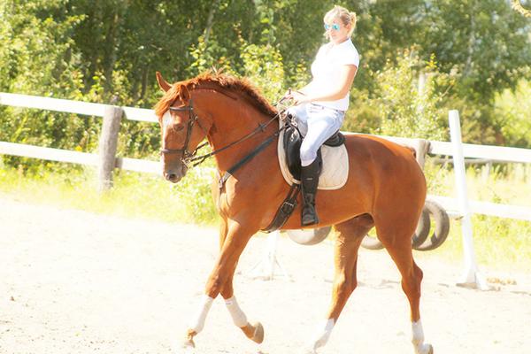 Фото №32 - Девушки на коне: самые романтичные наездницы Ульяновска