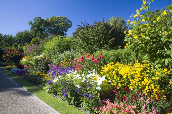 Фото №3 - 5 типичных ошибок при оформлении сада (и как их избежать)