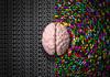 Правши и левши: чей мозг работает быстрее?