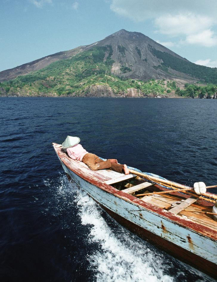 Фото №2 - Орех преткновения: как устроена жизнь на «островах специй»