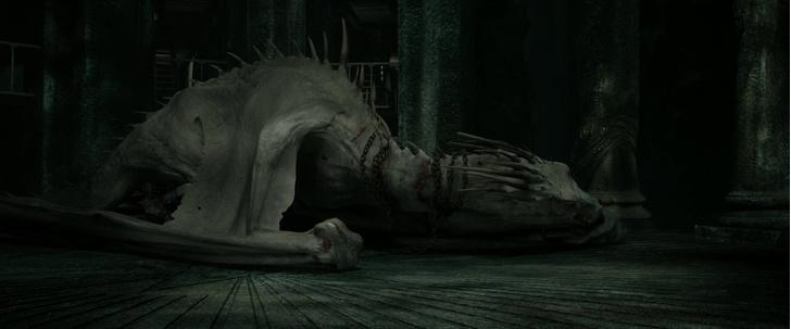 Фото №3 - «Гарри Поттер»: самые интересные и малоизвестные факты про драконов 🐲