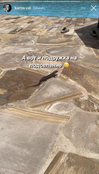 Фото №2 - «Очень соскучилась по России»: почему Валя Карнавал хочет домой?