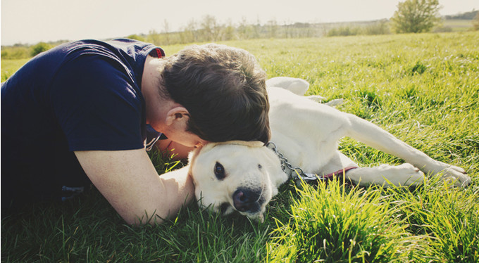 Он любит свою собаку больше, чем меня