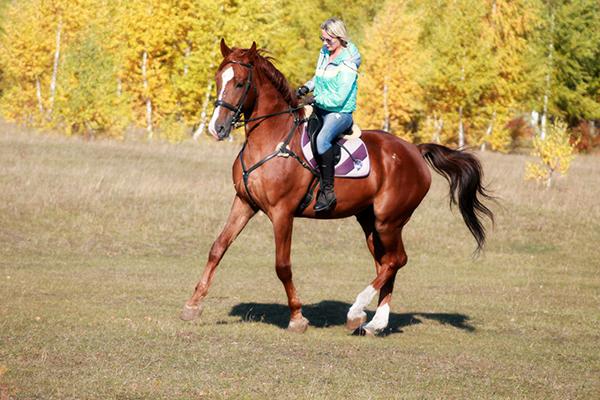 Фото №31 - Девушки на коне: самые романтичные наездницы Ульяновска