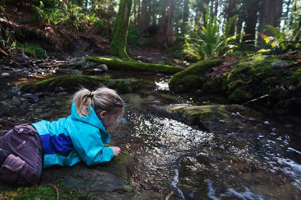 Фото №6 - Я познаю мир: география и природоведение для малышей