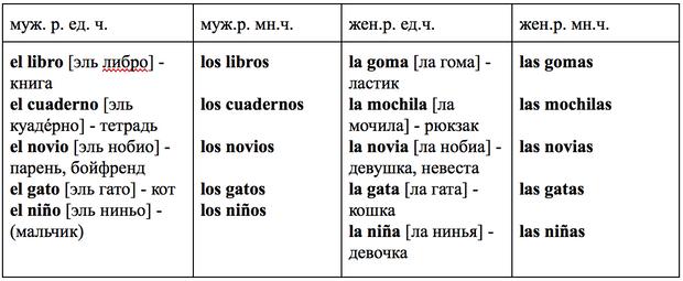 Фото №2 - Зажигательный испанский: урок 4 — изучаем род и число существительных