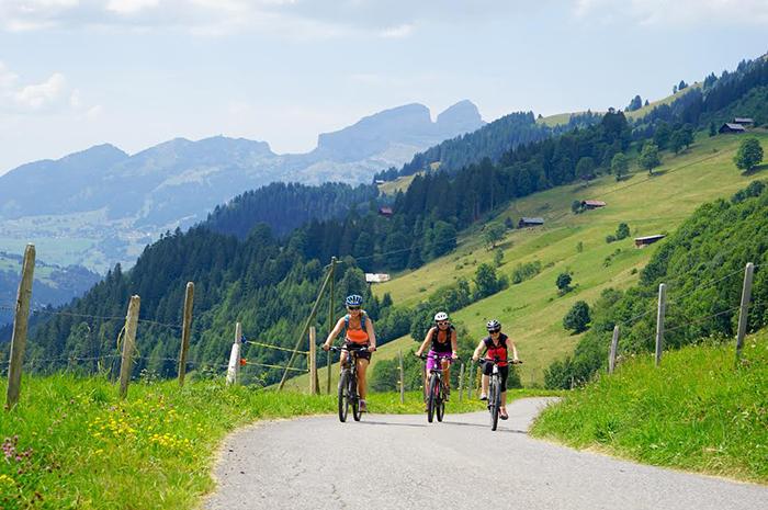 Фото №7 - Летняя Швейцария: горы возможностей для семейного отдыха