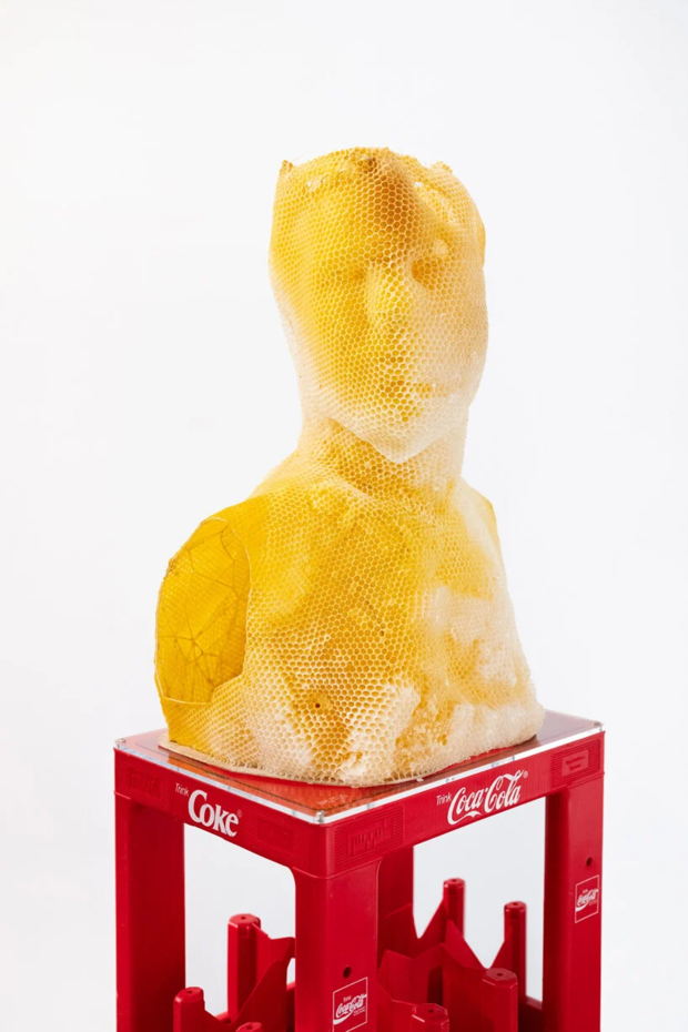 Фото №5 - Бюст Нефертити из пчелиных сот