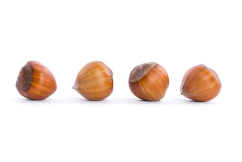 На 8 неделе беременности плод можно сравнить с лесным орехом