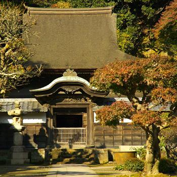 Любоваться осенними красками можно у одной из главных красот Камакуры – буддистского храма Энгаку.