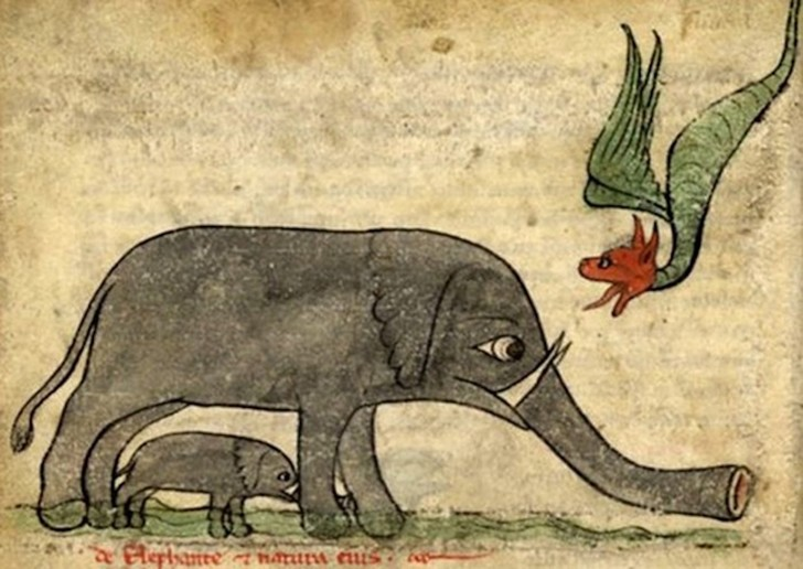 Фото №8 - Как в старину художники изображали животных, которых никогда не видели (25 странных существ)