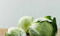Капустные оладьи: вкусно и просто