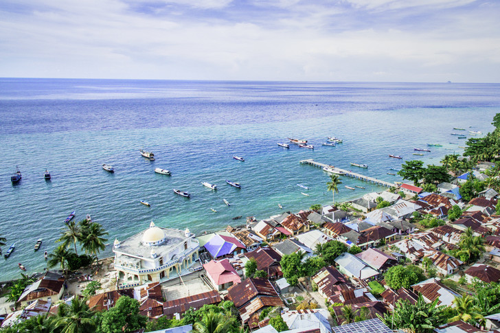 Фото №8 - Орех преткновения: как устроена жизнь на «островах специй»