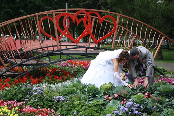 Фото №3 - Где в Кемерово отметить День семьи, любви и верности