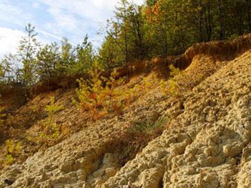 Под камнями оказался поселок, расположенный у подножья горы
