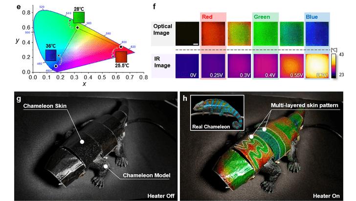 Фото №1 - Физики создали робота-хамелеона
