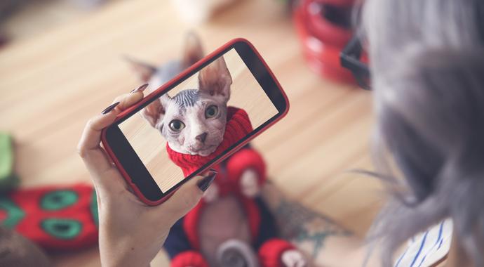 5 правил для фото в инстаграме в 2021 году