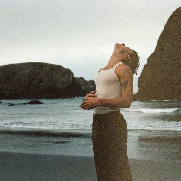 Фото №3 - 5 вещей, которые мы узнали из документалки «Шон Мендес: In Wonder»