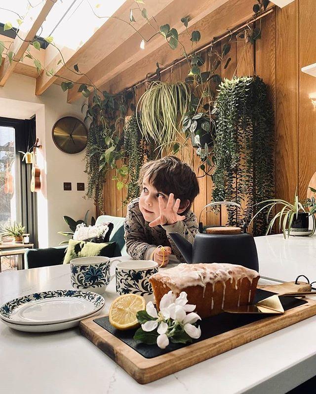 Фото №5 - Растения на кухне: 7 практичных идей