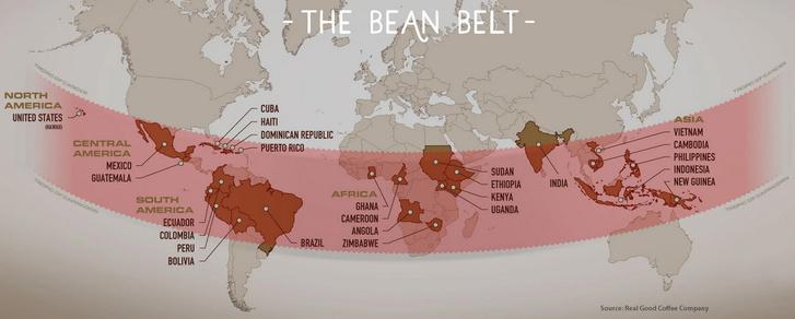 Фото №4 - Инфографика: ведущие страны мира по производству кофе
