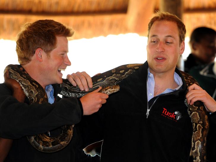 Фото №18 - 15 трогательных фото, доказывающих, что Уильям и Гарри были действительно близки