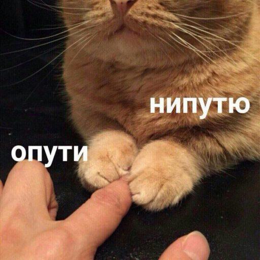 Фото №7 - 10 интернет-мемов, которые популярны только в России