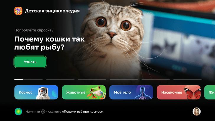 интерактивная энциклопедия Салют