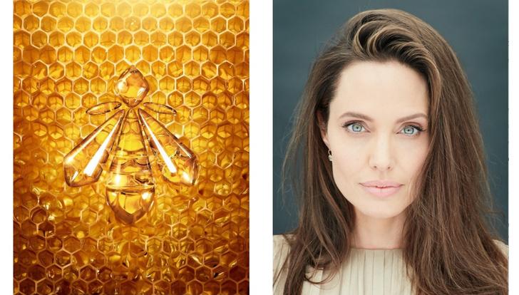 Фото №1 - Анджелина Джоли и Guerlain запускают эко-проект в поддержку женщин-пчеловодов