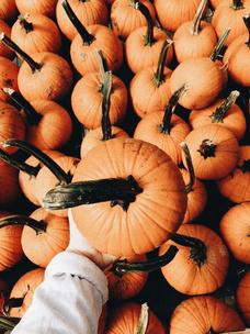Фото №6 - Тест: Выбери тыкву, и мы опишем твою осень тремя эмодзи