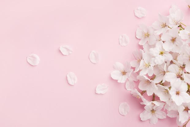 Фото №4 - К чему снятся цветы: что говорят сонники и психологи