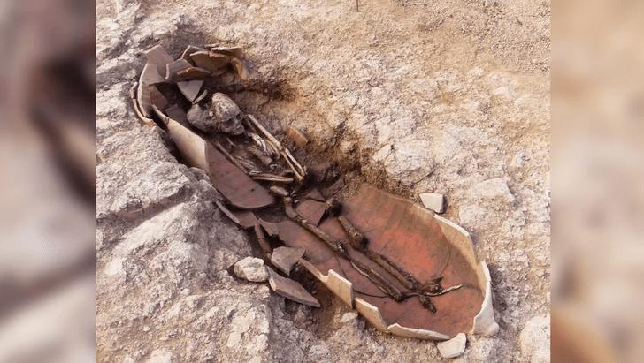 Фото №1 - На Корсике обнаружены амфоры с человеческими останками