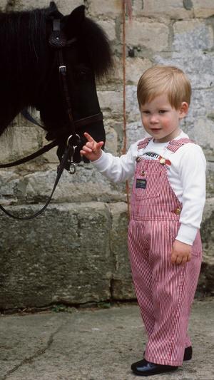 Фото №8 - 15 трогательных фото, доказывающих, что Уильям и Гарри были действительно близки