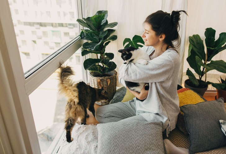 Россиянам ограничат число собак и кошек в квартире