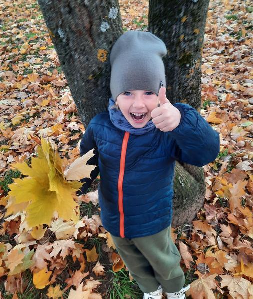 Фото №5 - Детский фотоконкурс «Собираем гербарий»: выбирай лучшее фото