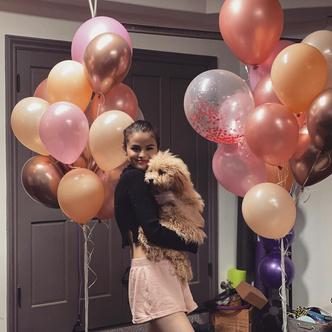 Фото №4 - Милоты пост: любимые собачки знаменитостей 🐶⭐