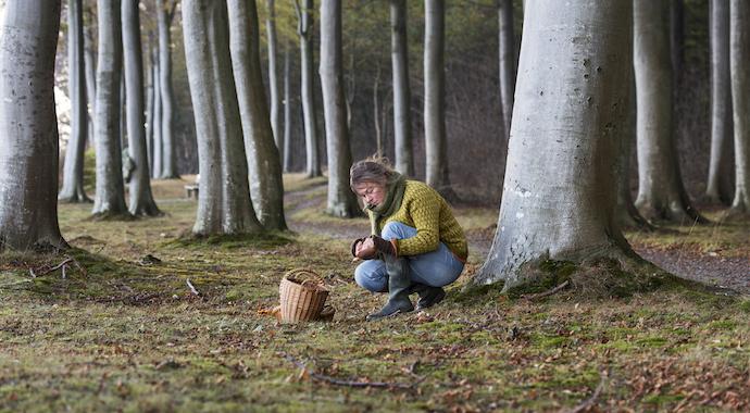 4 правила безопасности в лесу: рекомендации бывалой туристки