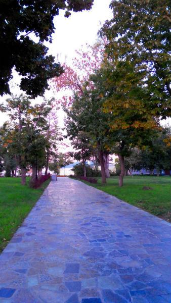 Фото №14 - 10 мест в Астрахани, где осенью – настоящая сказка!