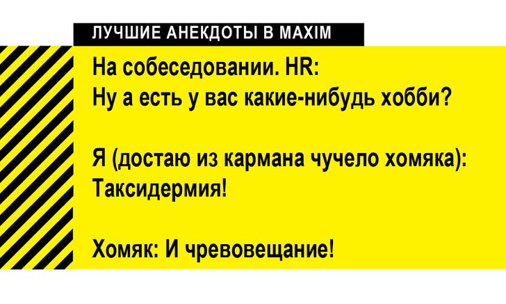 Фото №5 - Лучшие анекдоты про трудоустройство и собеседования
