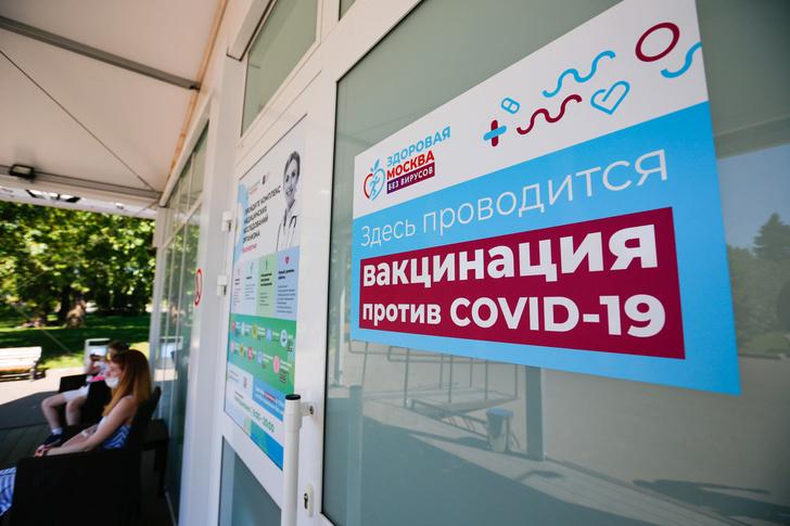 Фото №5 - Правда ли, что богатые россияне вакцинируются ради ресторанов, а бедные— ради работы