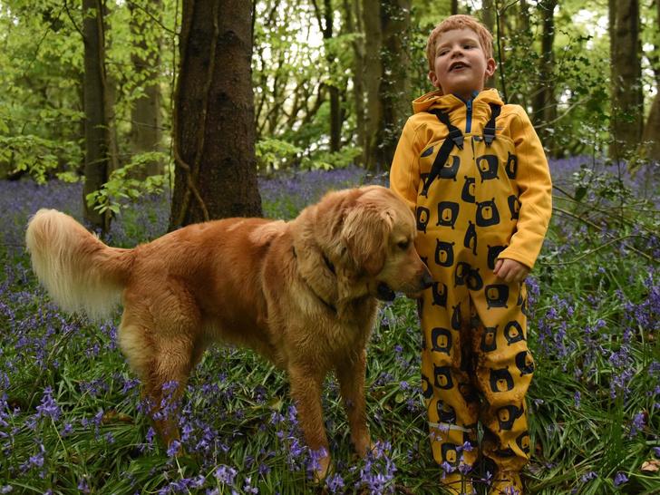 Фото №2 - Пес-поводырь стал нянькой и лучшим другом слепому малышу: трогательные фото