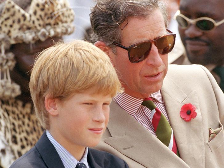 Фото №2 - 12 странных и скандальных высказываний принца Гарри о королевской жизни