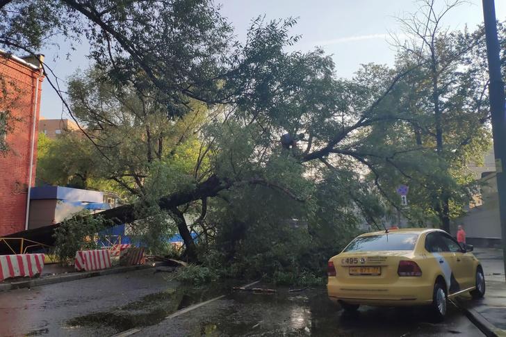 Фото №2 - Синоптики рассказали, где в России в ближайшее время могут возникнуть торнадо