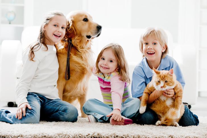 Фото №2 - Чем опасны домашние животные для маленьких детей?